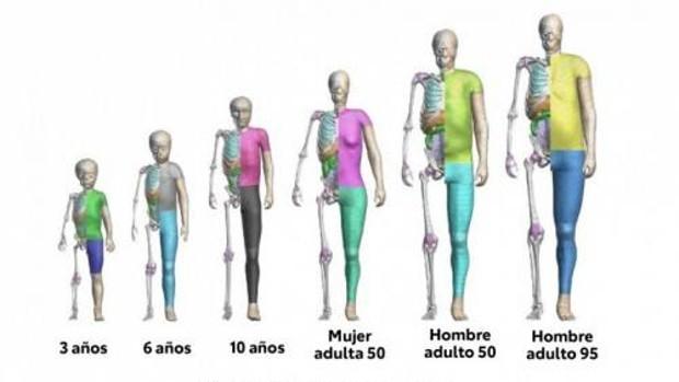 el software gratuito de modelación humana de toyota triunfa en descargas El software gratuito de modelación humana de Toyota triunfa en descargas 500 thums dummiesvirtuales softwaregratis4 U44746206563Hxt 620x349 abc